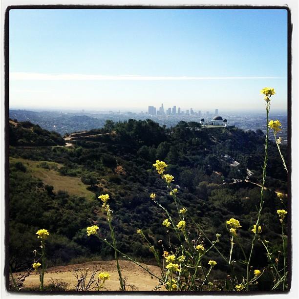 Family Hike: Dante's Peak, Griffith Park