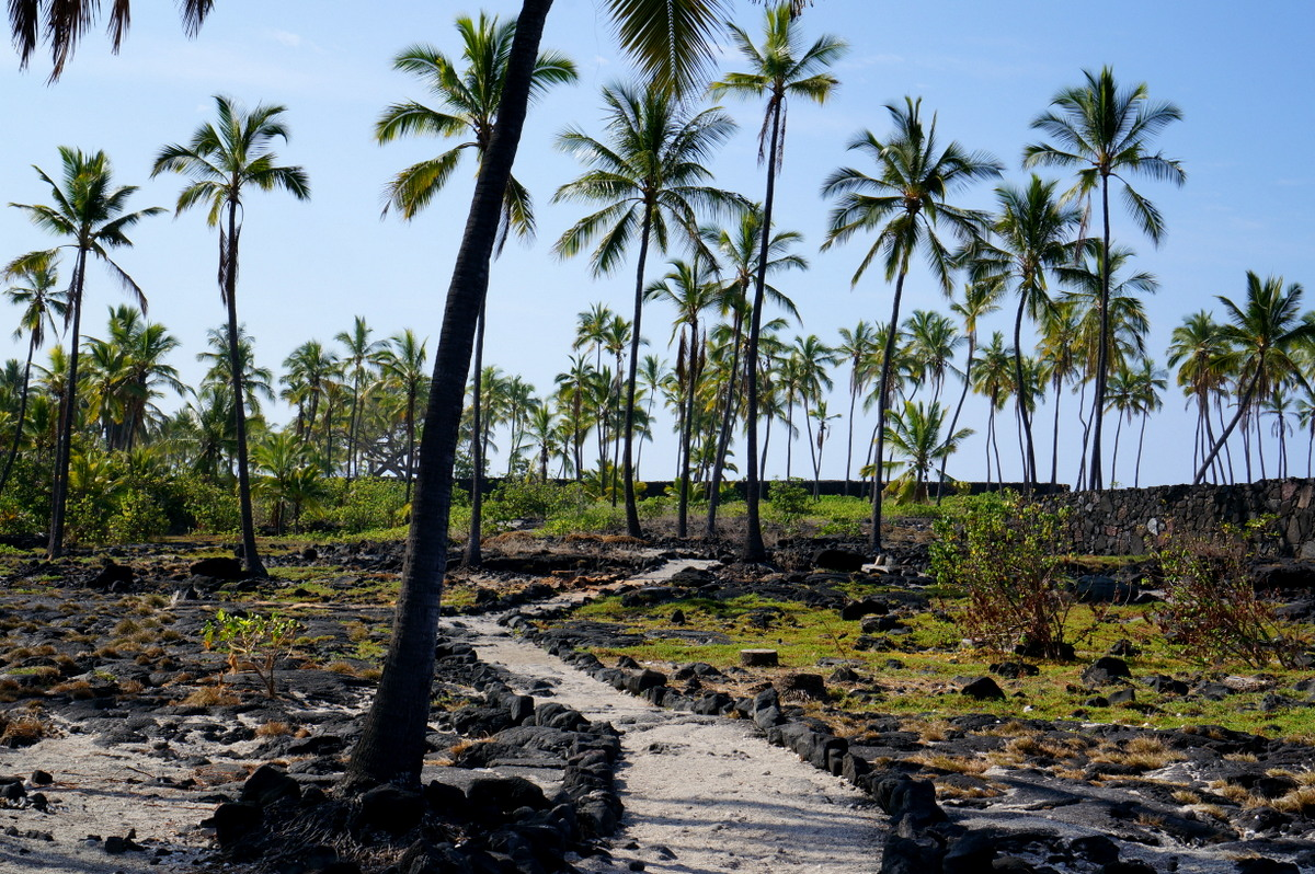 Experience Hawaiian culture as one of the top Things to Do in Hawaii Big Island