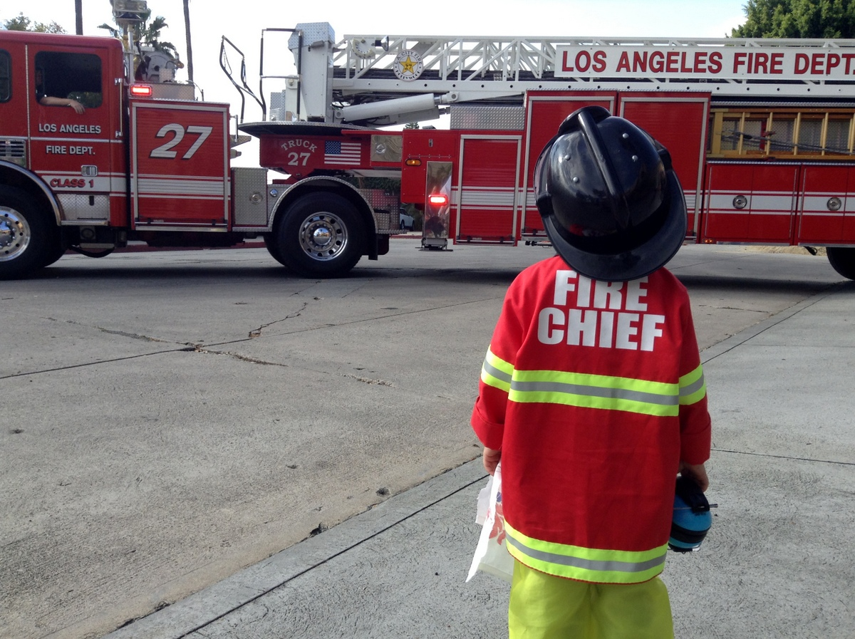 Essay on fire service day