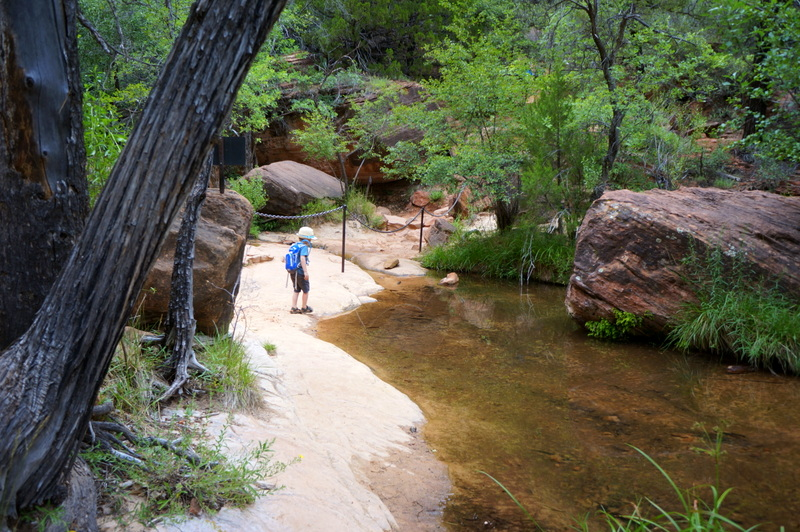 Middle Pools is a fun Zion hike for the whole family.