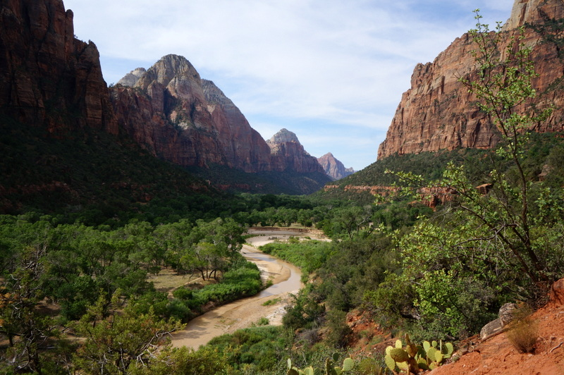 The Ultimate Guide To Exploring Zion National Park With Kids