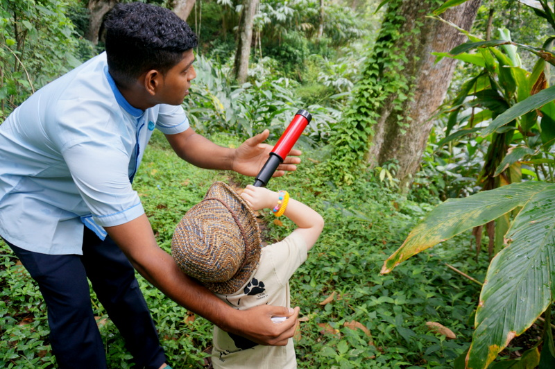 Hiking in the Jungles of Periyar - Places to Visit in Kerala with Kids