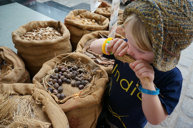 Smelling Spices, Places to Visit in Kerala with Kids