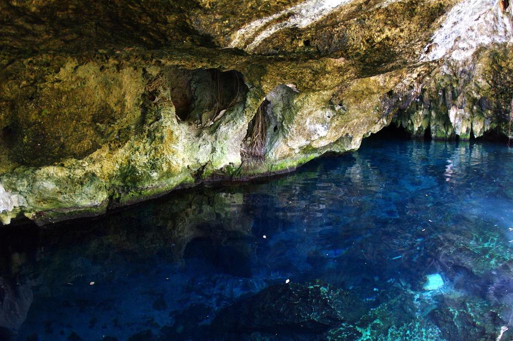 Gran Cenote, Tulum - Things to do in the Riviera Maya