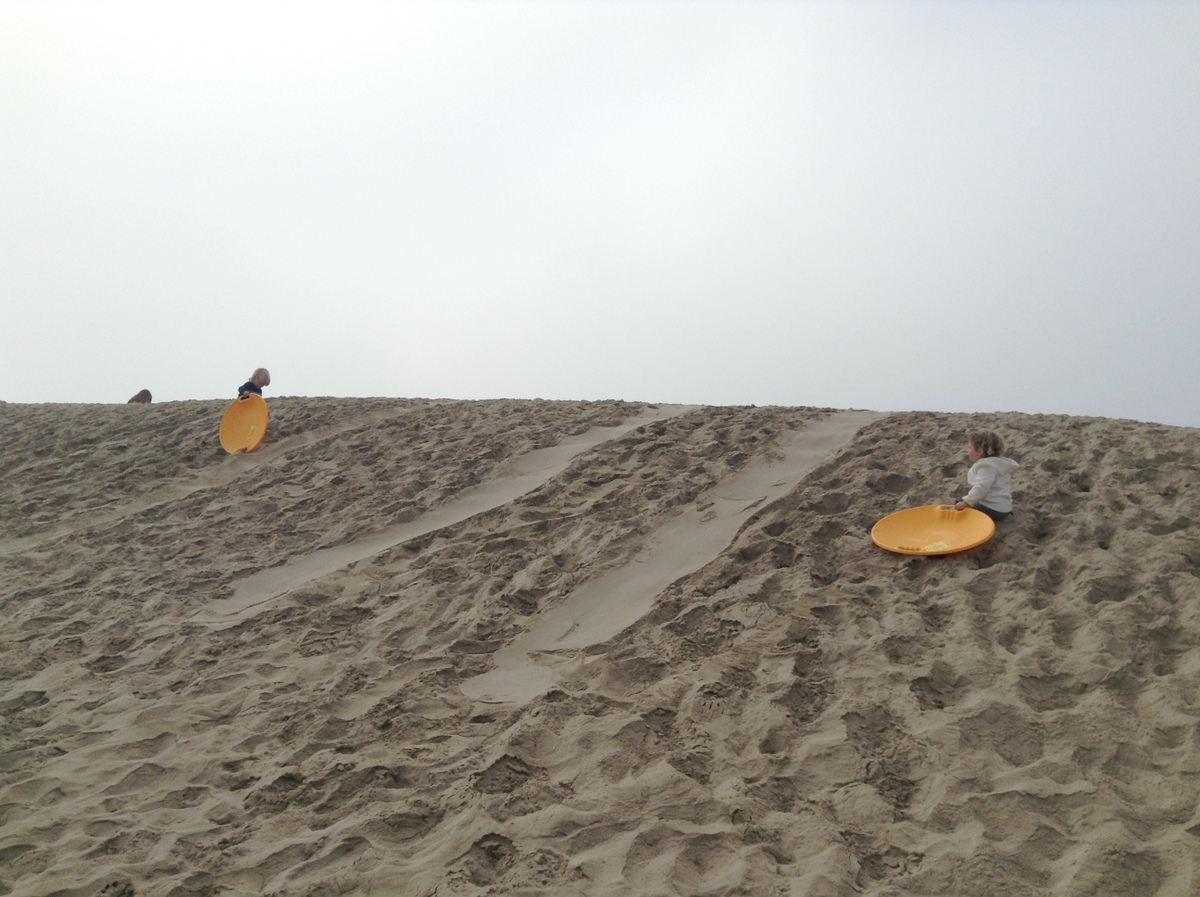 Sand Sledding - Los Angeles Holiday Activities and Events
