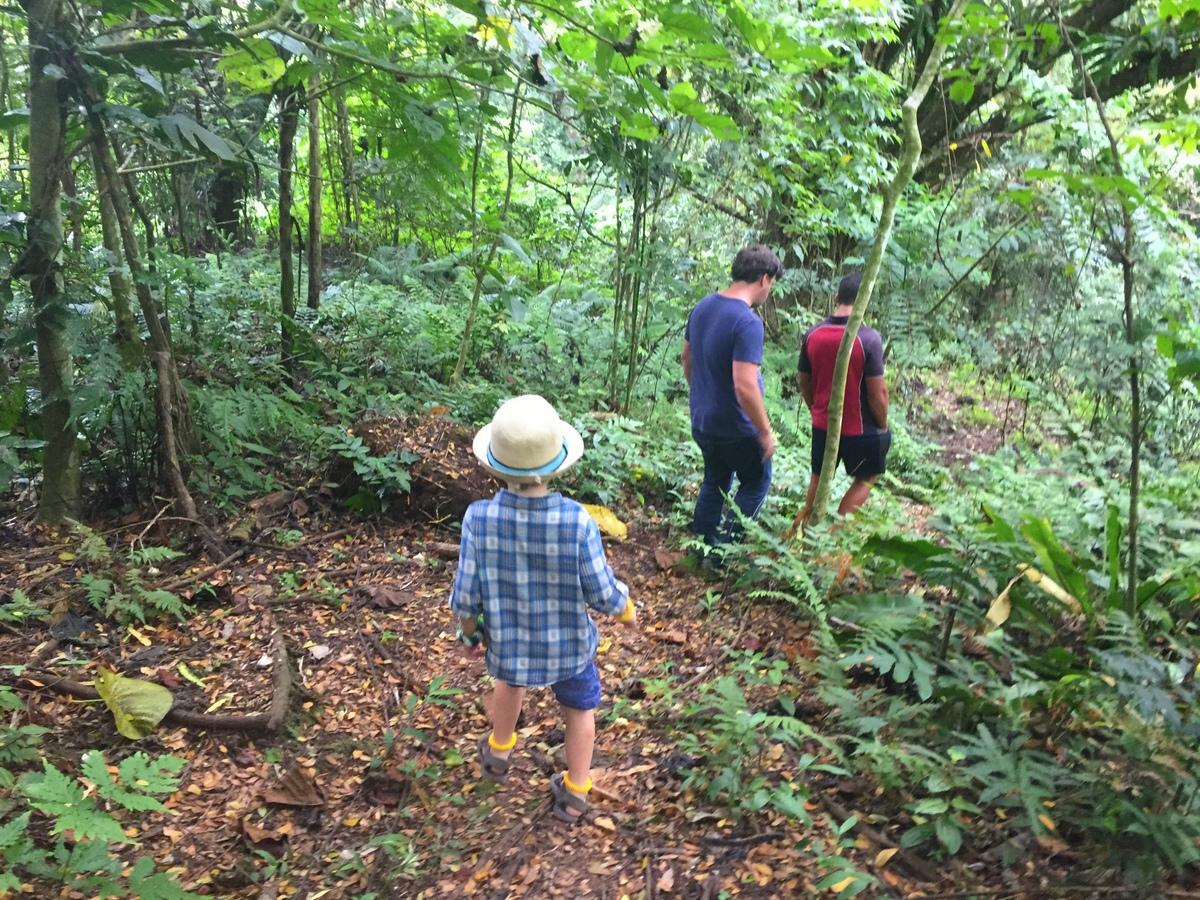 Koro Sun Resort - Hiking in the rainforest jungle