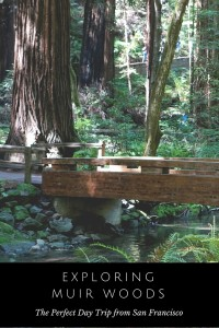 Exploring Muir Woods with (or without) kids is a perfect day trip from San Francisco.
