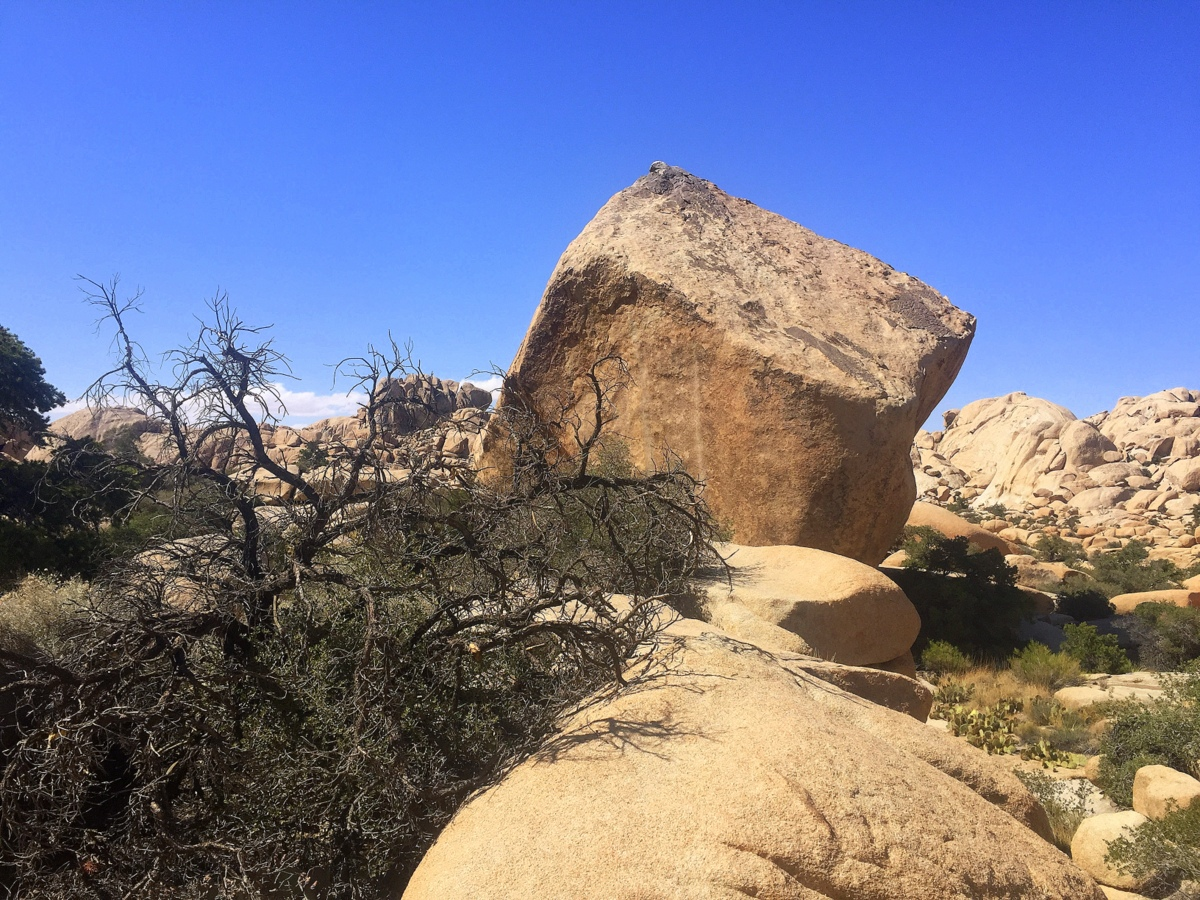 The Cube, Joshua Tree