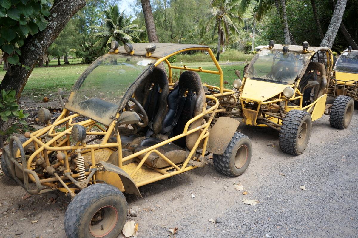 Raro Buggy Tour