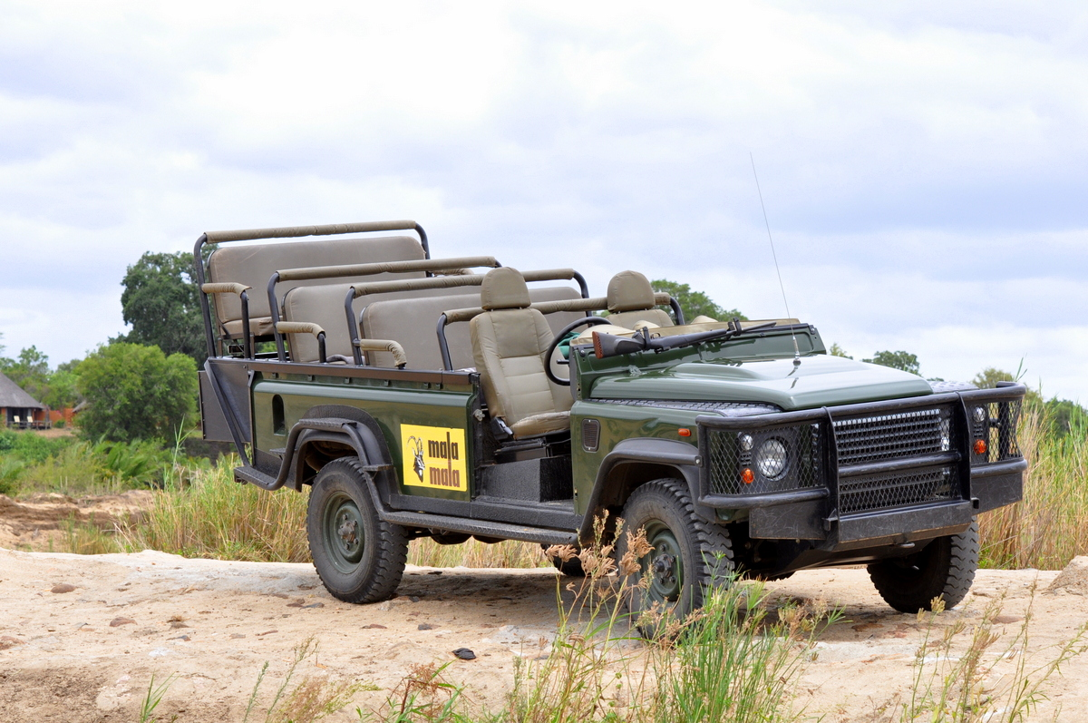 On Safari At MalaMala Game Reserve
