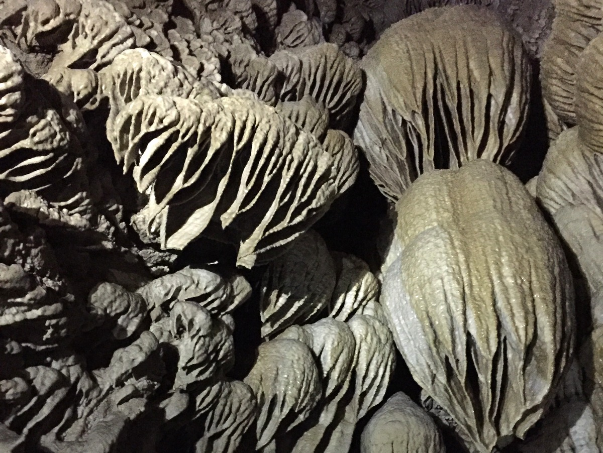 Oregon Caves National Monument - Oregon Road Trip Itinerary
