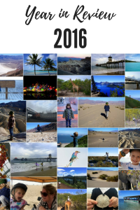 Travel Year in Review 2016