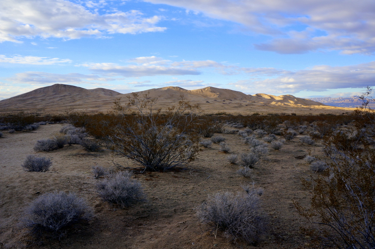 Camping in the Mojave National Preserve