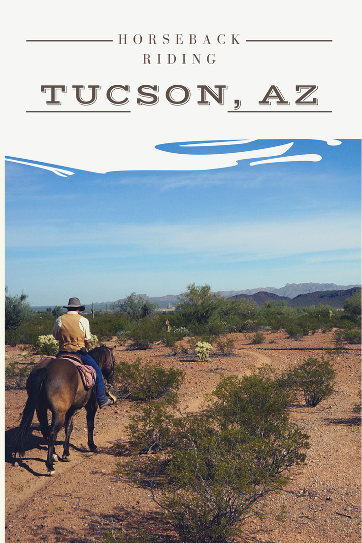 Horseback Riding In Tucson No Back Home