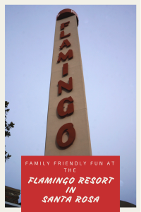 Flamingo Resort in Santa Rosa is family friendly, pet friendly & budget friendly!