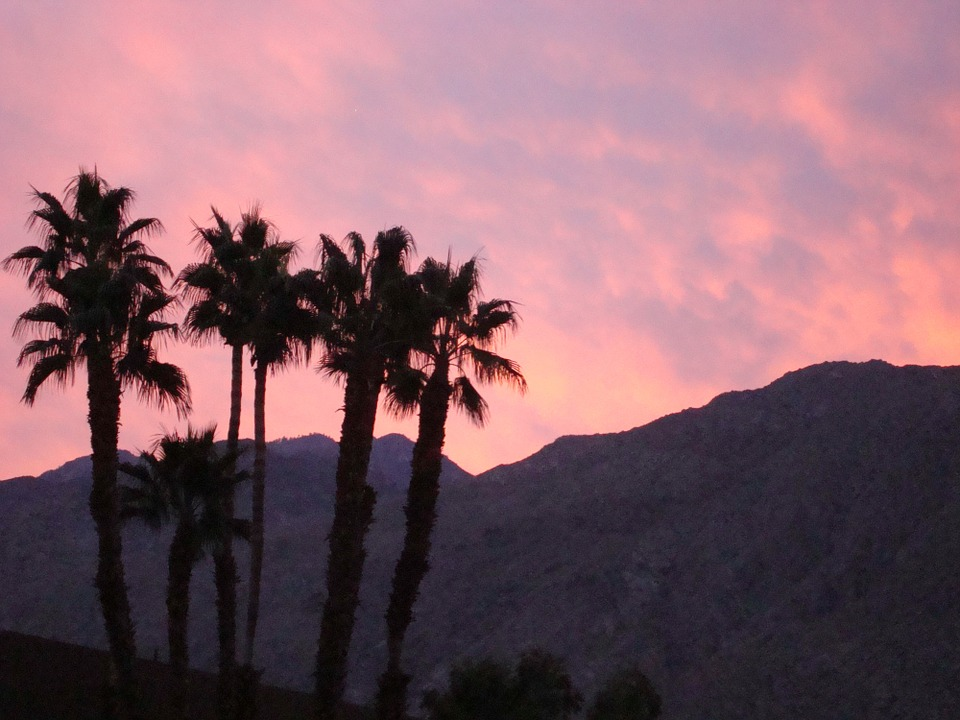 Top 5 Things For Families To Do In Palm Springs No Back Home