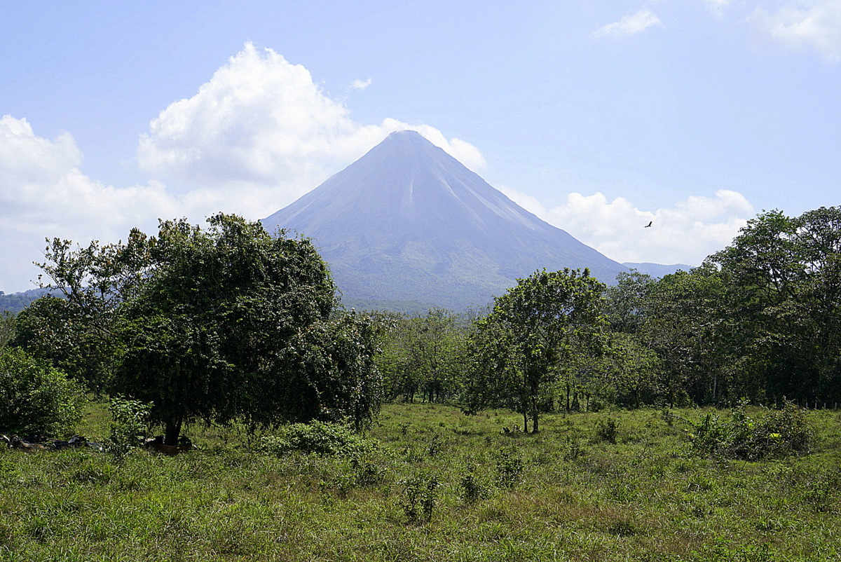 Arenal or Monteverde? Which is better? - No Back Home