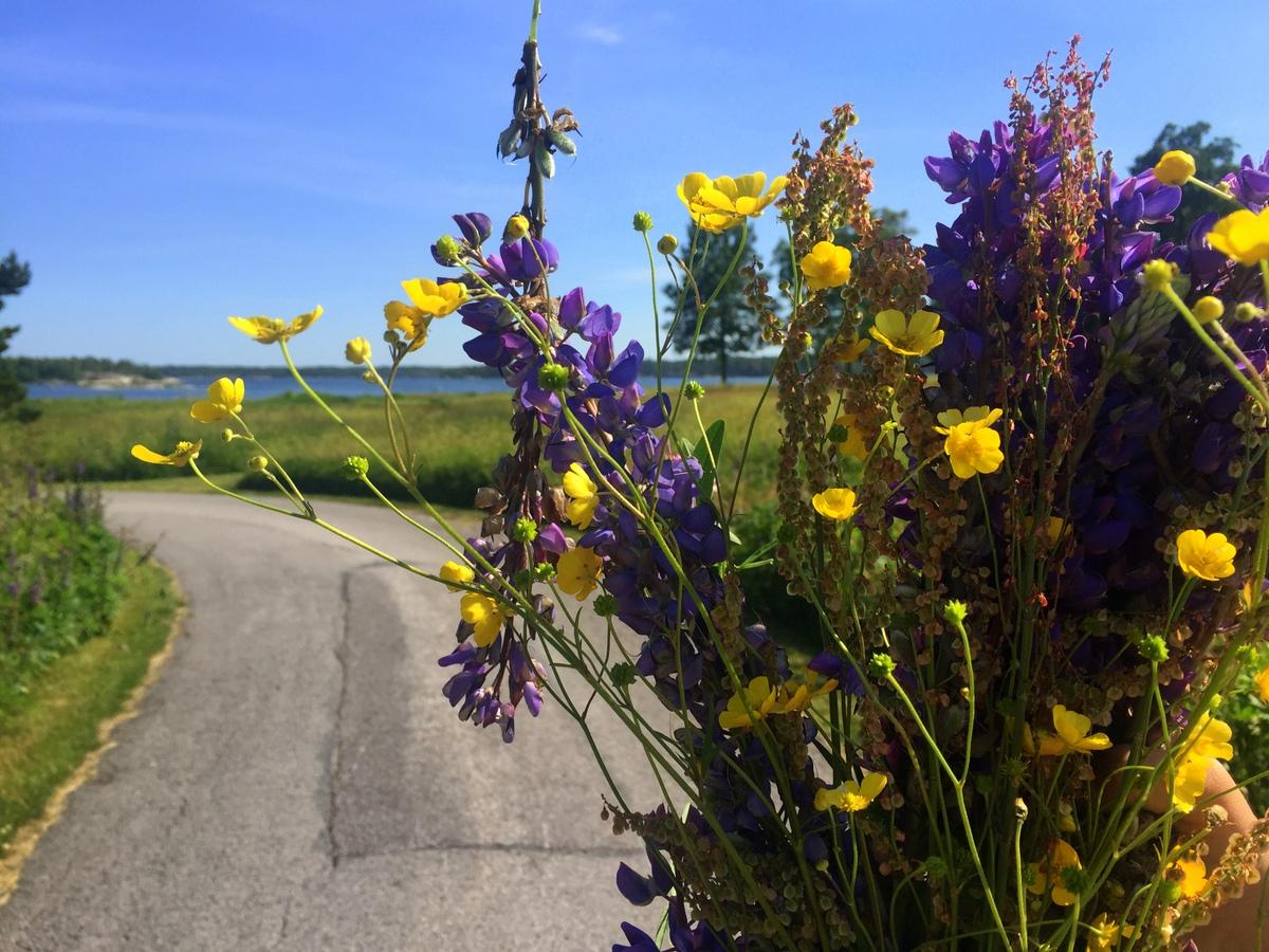 Celebrating Midsummer in Sweden - No Back Home