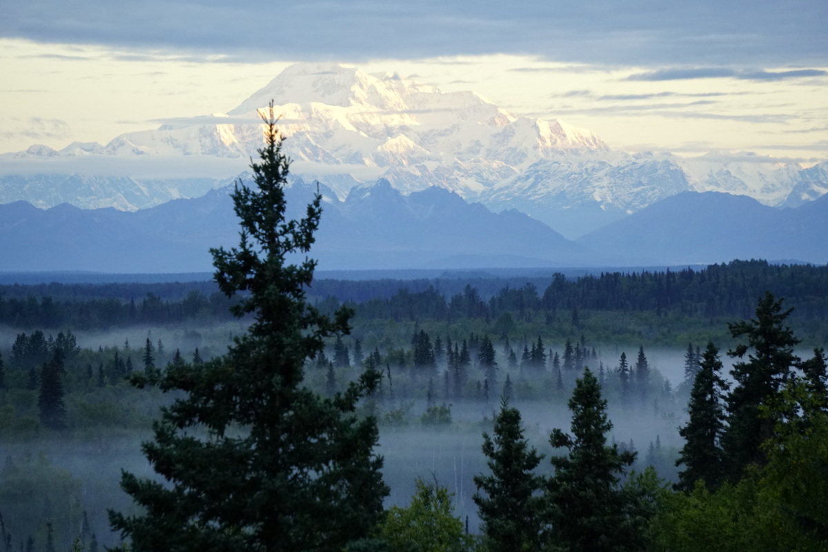 Our Summer Alaska Adventure