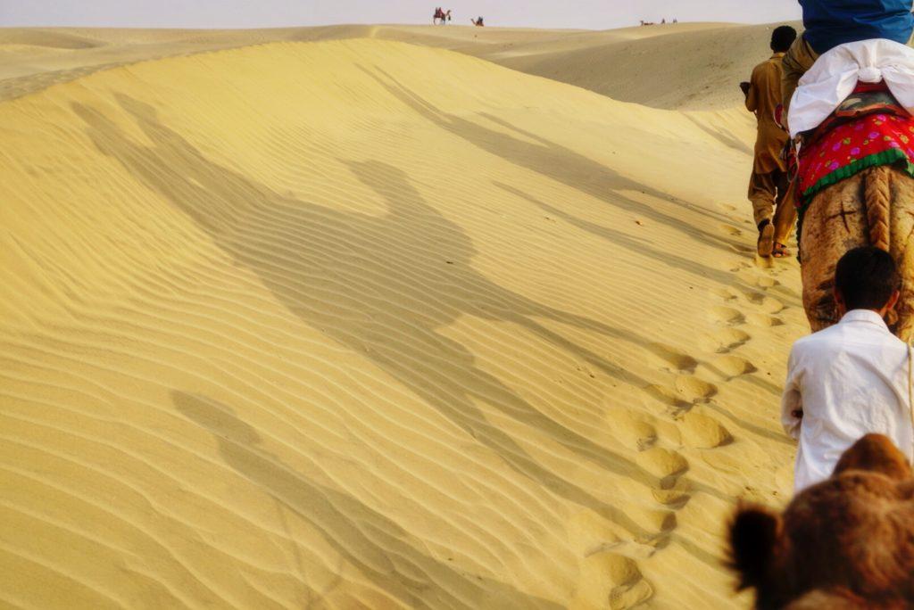 Camel Safari on the Palace on Wheels Itinerary