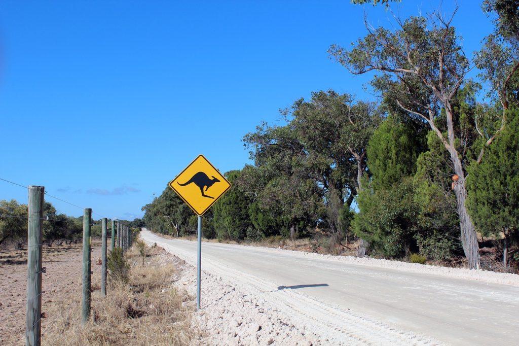 Best Road Trips Australia