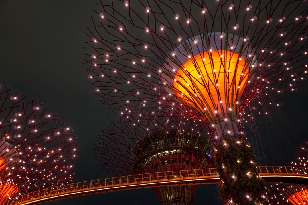Night rhapsody at Gardens by the Bay