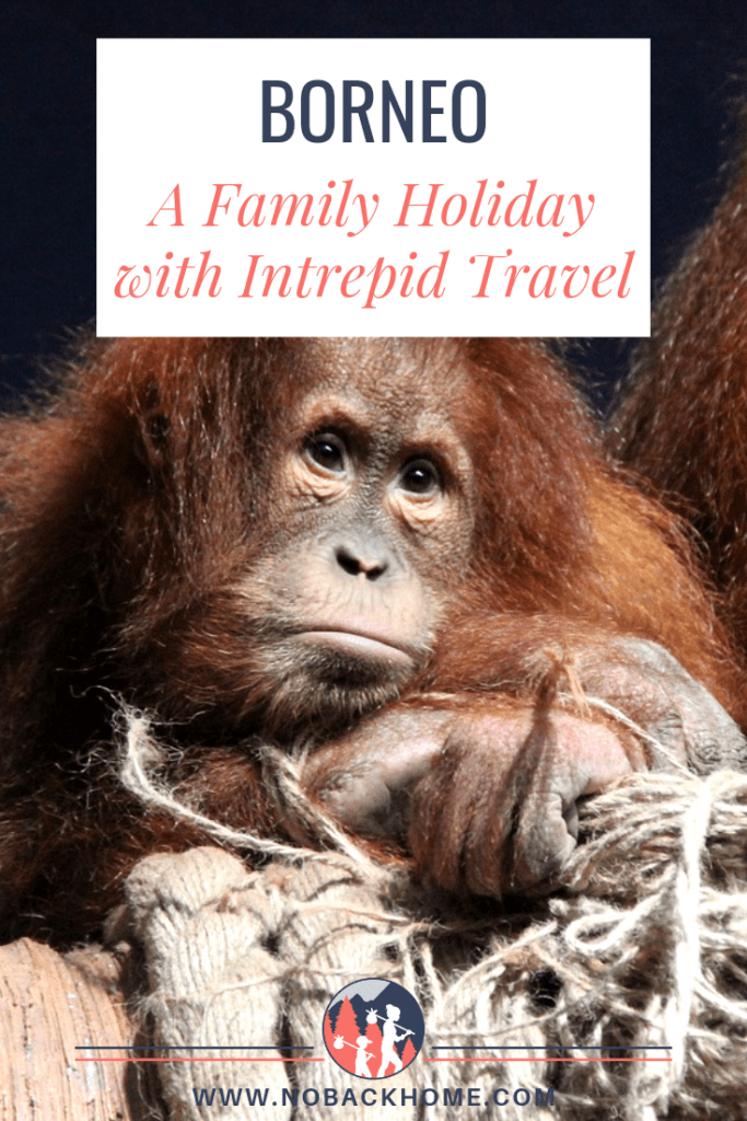 Borneo Family Holiday with Intrepid Travel is a great way to see the highlights of the island.