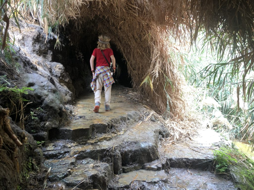 Ein Gedi Nature Reserve is a great place to visit in Israel
