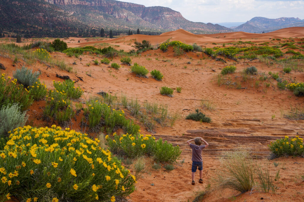 Coral Sand Dunes State park is one of the best things to do outside of Zion to avoid the crowds.