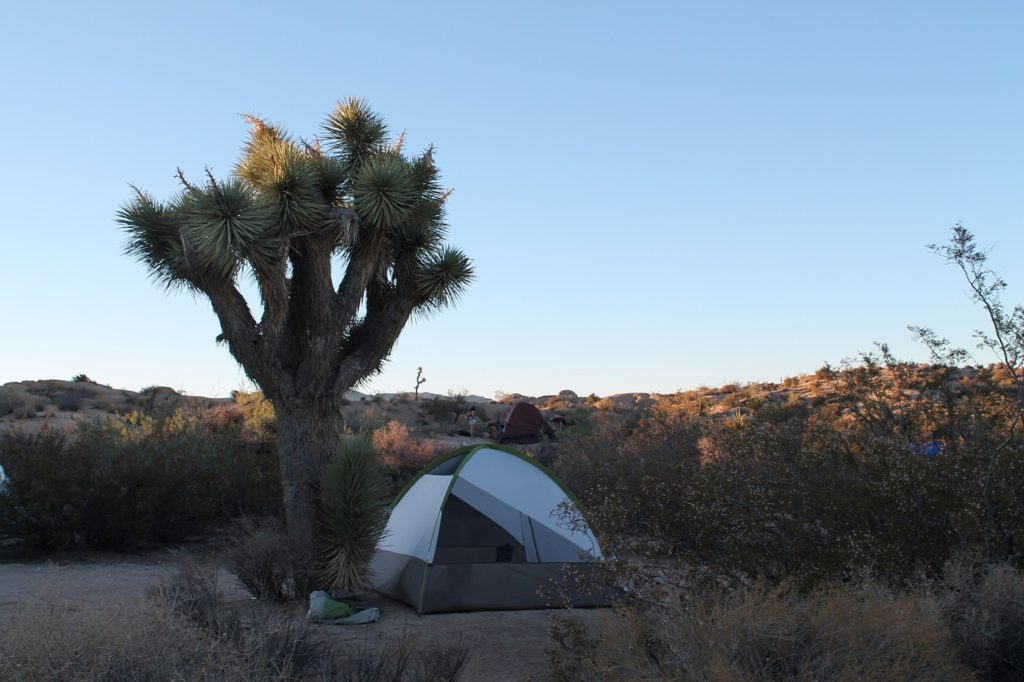 desert camping in Southern california