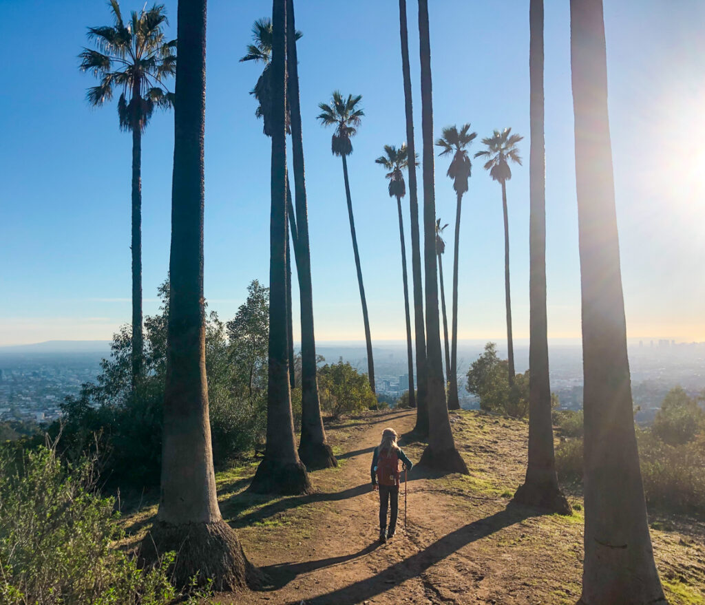 Ultimate Guide To The Best Hiking In Los Angeles